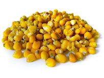 Maïs Geel kant en klaar 5KG